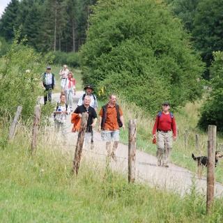 Partnerweg des Eifelsteiges: Eifeler Quellenpfad_Jakobsweg