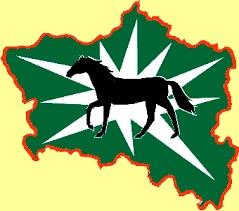 Logo Sternreiten Altmark / IMG Sachsen-Anhalt mbH