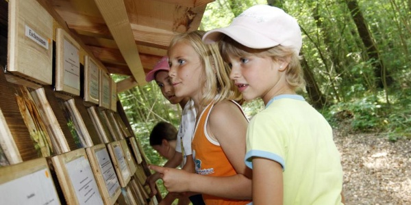 Waldparcours Schaan