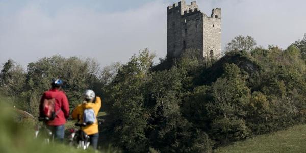 Burg Wartau
