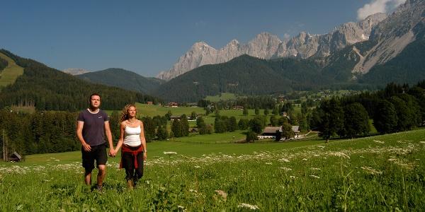 Kulmbergrunde Blick Dachstein