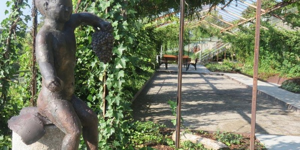 Rosenfeld Rosen- und Skulpturengarten Boulebahn