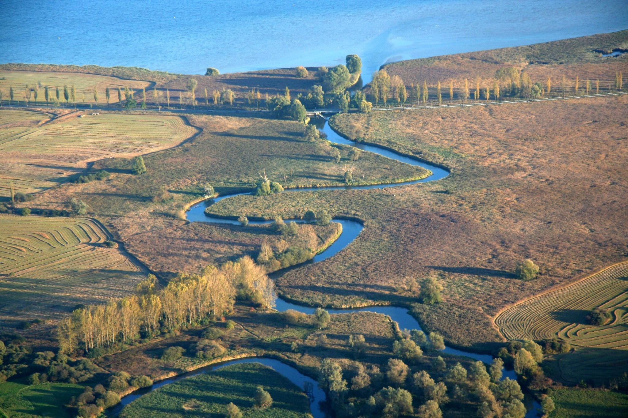 Mündungsdelta der Aach in den Bodensee bei Moos