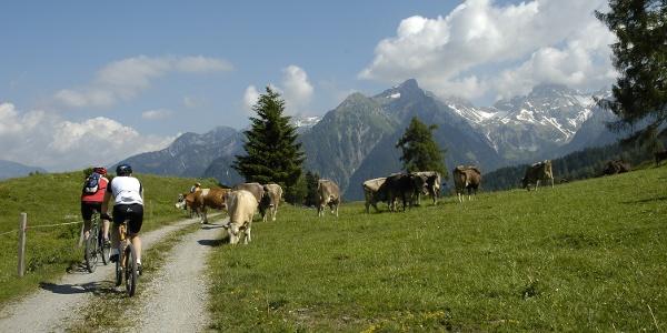 Bei der Rona Alpe