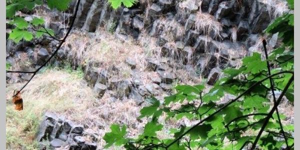 Basaltgestein