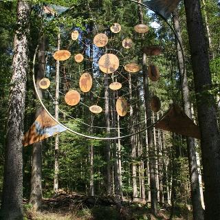 Im Wald hängt alles voneinander ab