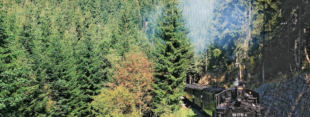 Die Pressnitztalbahn