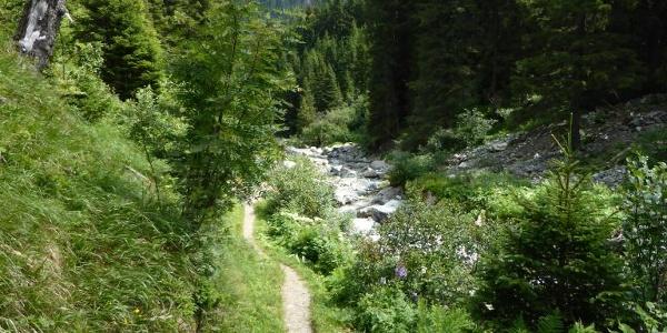 Weg entlang des Suggadinbaches