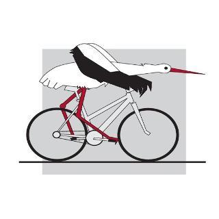 Fahrradstorch auf Tour