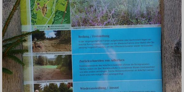 Erklärung Arbeiten im Nationalpark Naturata 2000