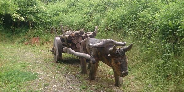 Ochsenkarren Ottbergen