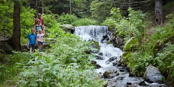 Themenweg Wildwasser in Mariensee
