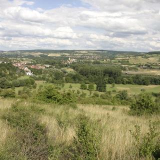 Blick von Bliesgau auf Rheingau.