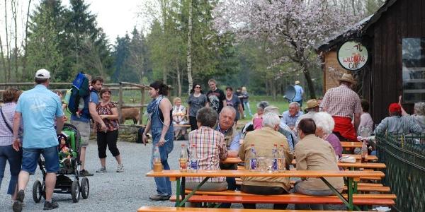 Ausflugsbiergarten für Wandrer, Spaziergänger und Radfahrer - Wildbergcafé - Tettau