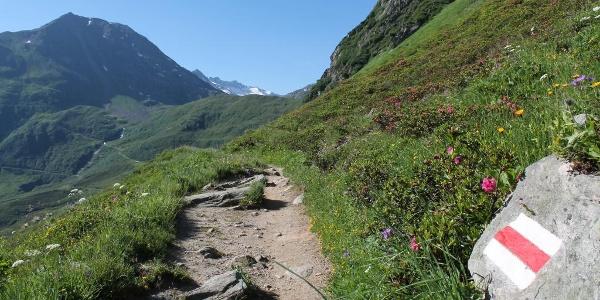 auf dem Wanderweg ins Val Maighels hinein