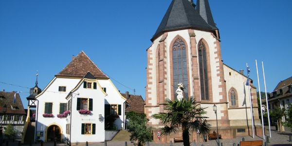 Der historische Marktplatz von Deidesheim mit der Pfarrkirche St. Ulrich und dem Alten Rathaus.