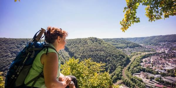 Panorama auf Geislingen vom Anwandfelsen
