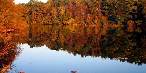 Herbstliche Stimmung an der Kinzigtalsperre.