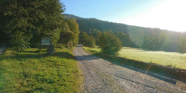 Auf dem Forstweg bei Rohrmünz
