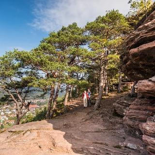 Blick vom Hauensteiner Schusterpfad