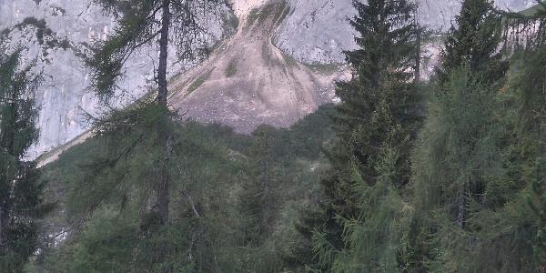 Freitag, 02. September 2016 almbergloh07:41:34