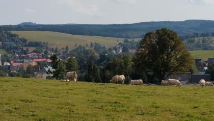 Blick über Bärenstein