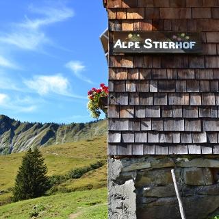 Alpe Stierhof – ein sonniges Plätzchen unterhalb der Ochsenhofer Köpfe