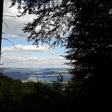 Blick vom Firstweg Richtung Zeller See / Radolfzell