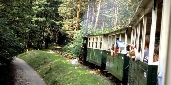 Waldeisenbahn Muskau