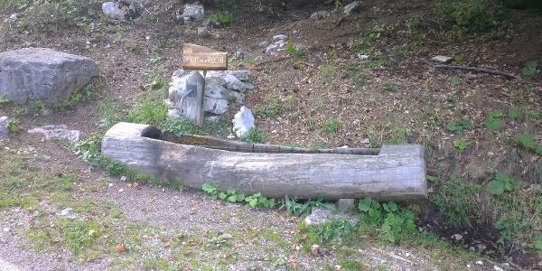 Fontanella Brenz della Roccia.