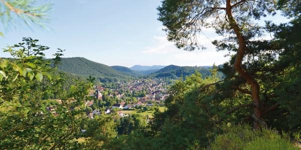 Blick auf Erfweiler