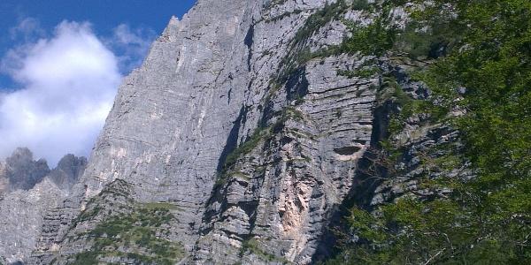 L'imponente parete del Croz dell'Altissimo.