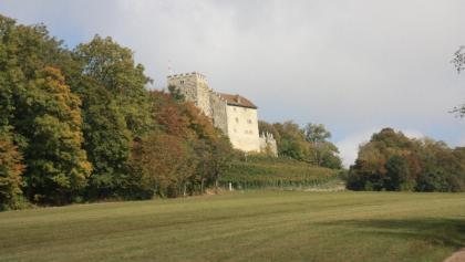 Schloss Habsburg.