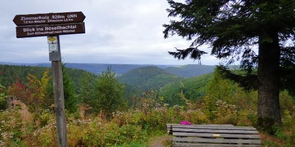 Panoramablick ins Bösellbachtal Richtung Mitteltal
