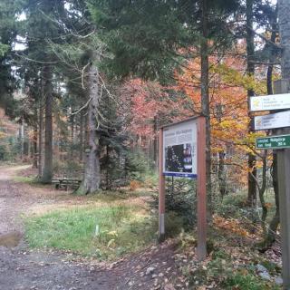 Die Strecke entlang am Naturlehrpfad.