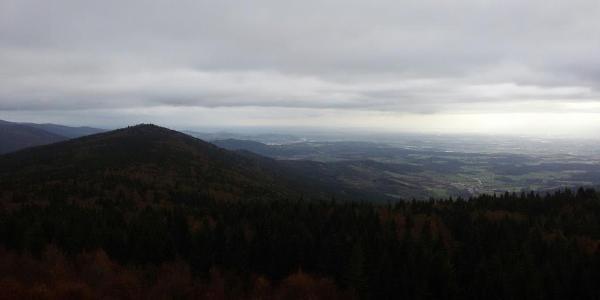 Ausblick vom Turm auf dem Hirschenstein