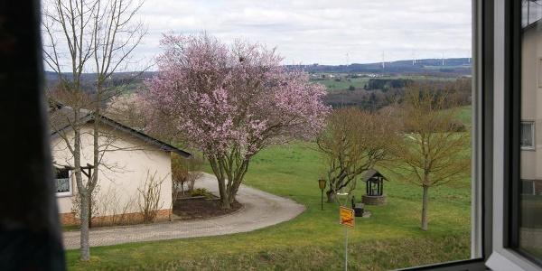 Gasthaus Schmitt Fernsicht