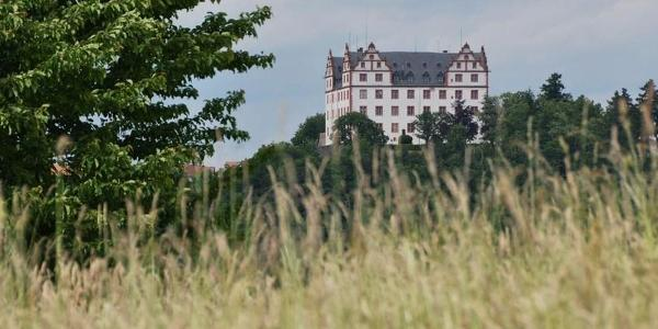 Pfad der Vielfalt in Fischbachtal (Blick auf Schloss Lichtenberg)