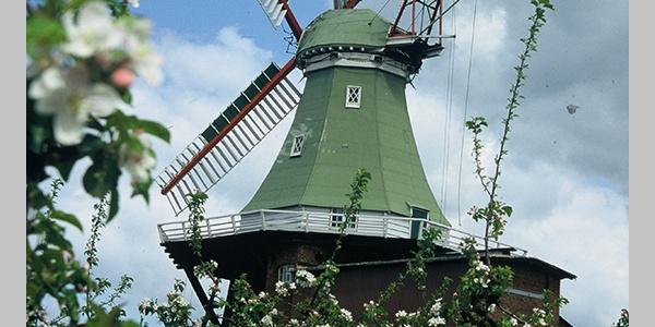 Windmühle Venti-Amica
