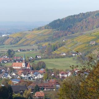 Blick auf die Gemeinde Glottertal
