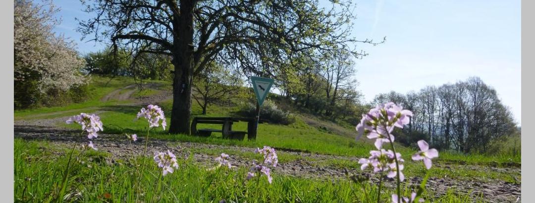 Naturschutzgebiet Wartekopf