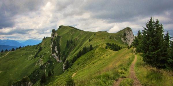 Gratweg zum Latschenkopf (1712 m) und Vorderen Kirchstein