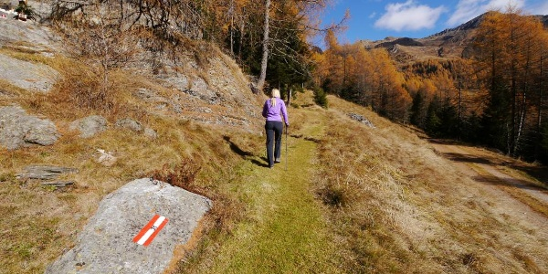 Wir folgen dem alten Militärweg Nr. 31.