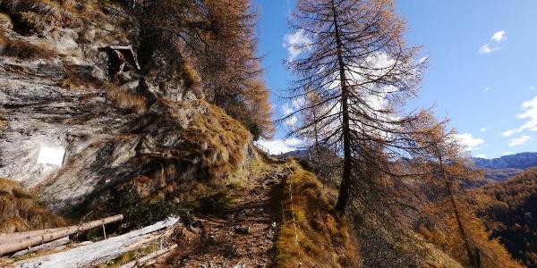 Der Knappenweg Nr.31 geht teilweise steil bergan.