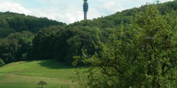 bis hoch zum Blickpunkt Chrischona - Fernsehturm