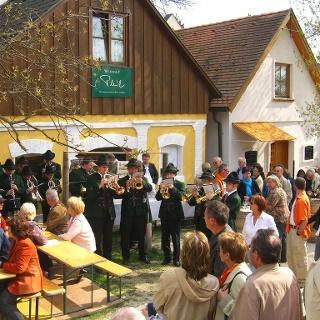 Kellergasse Wolkersdorf