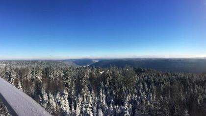 Baumwipfelpfad Schwarzwald im Winter