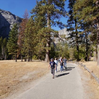 Trail through Yosemite Valley