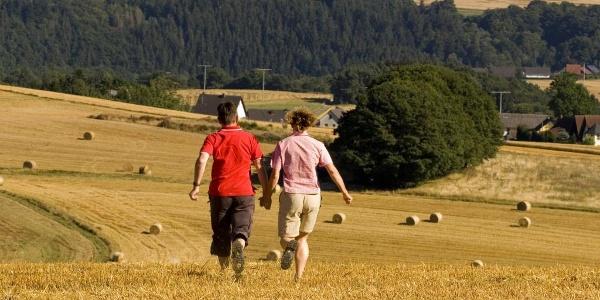 Felder bei Wanderath