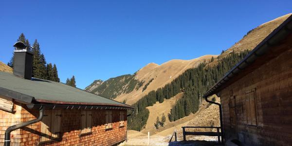 Am höchsten Punkt der Wanderung, Alpe bei 1.555m